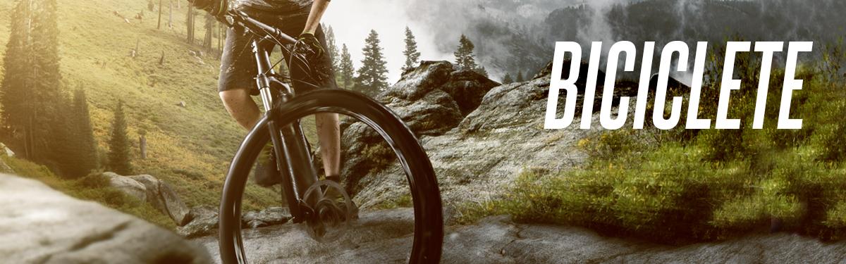 Biciclete 2020